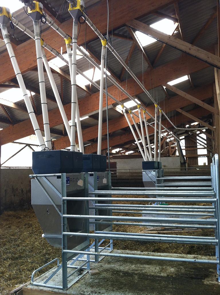 Distributeur Automatique de Concentré I3E élevage