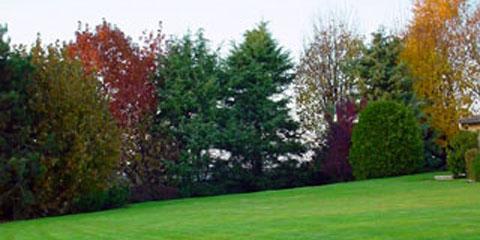 Entretien de jardins par les paysages du val de moine 49 for Entretien jardin 49