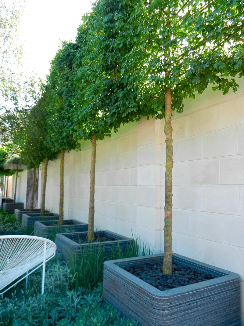 Jardins contemporains meilleures images d 39 inspiration pour votre design de maison - Idee jardin contemporain ...