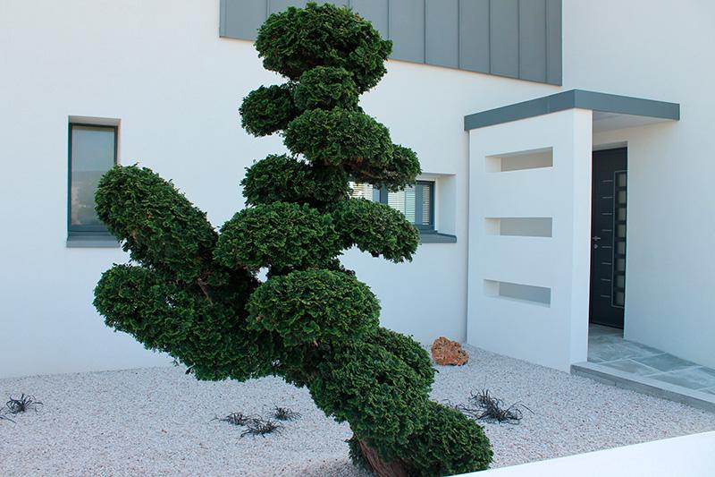 v g taux min raux pour des jardins contemporains. Black Bedroom Furniture Sets. Home Design Ideas