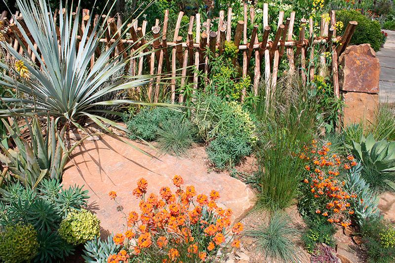jardins exotiques avec des fleurs et palmiers pour voyager. Black Bedroom Furniture Sets. Home Design Ideas