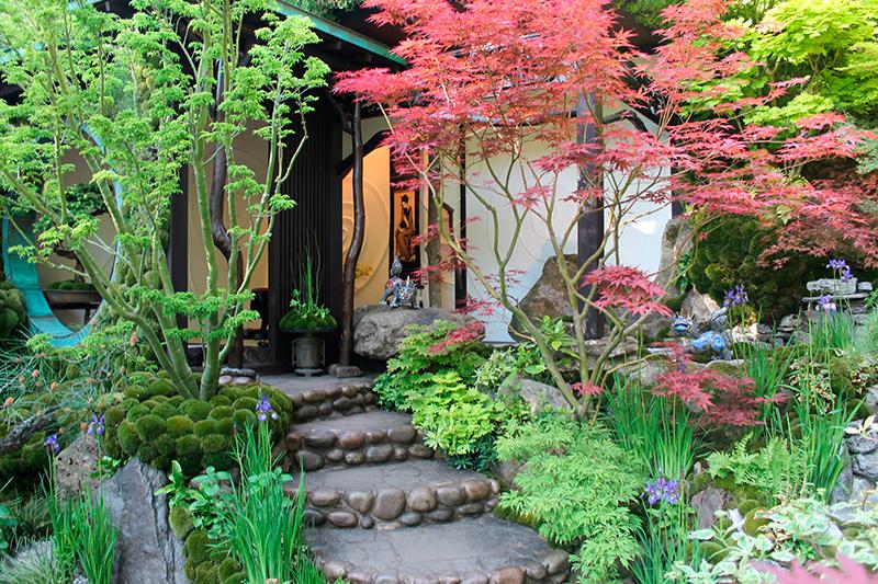 Fleurs arbustes lanterne chinoise pour des jardins japonais for Idee creation jardin japonais